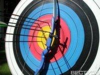 Чемпионат Украины по стрельбе из лука