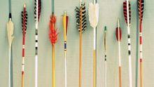 Ученые выяснили, от чего зависит оптимальный дизайн перьев для стрельбы из лука