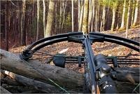 Охотиться с арбалетом можно с 1 января в Нижегородской области