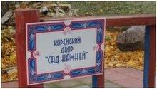 В Национальной деревне застрелили собаку из арбалета